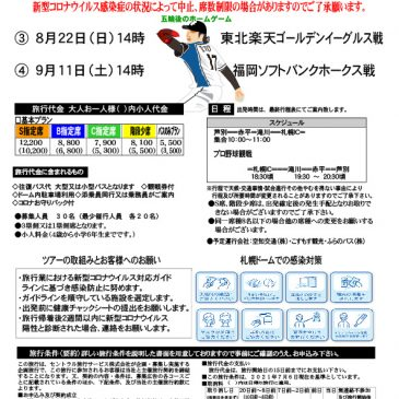 札幌ドーム観戦ツアー